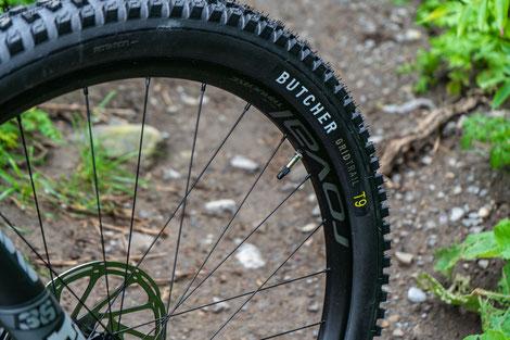 Butcher Grid Trail Reifen