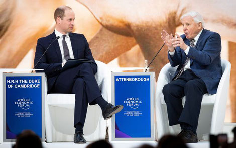 Sir David Attenborough addressing the World Economic Forum at Davos in 2019.