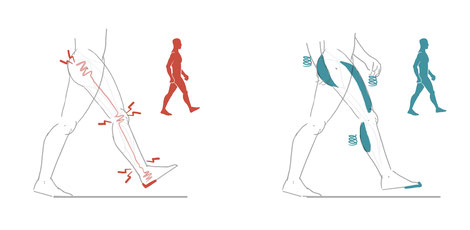 Ein aufrechter natürlicher Gang schont die Gelenke, vor allem Hüfte und Knie