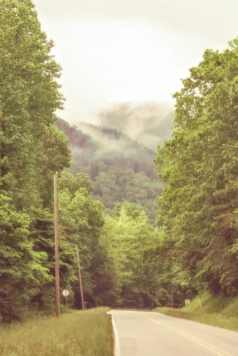 Road through the Blue Ridge Mountain leading to Hambidge. Photo by Robin Israel.