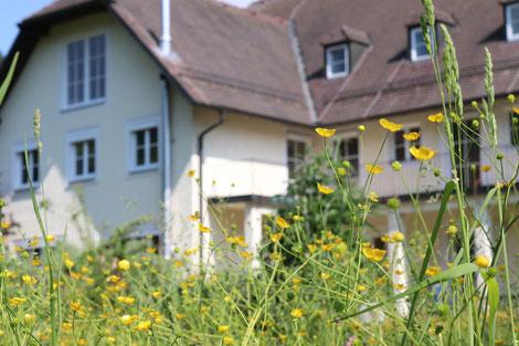 Donauvilla Jochenstein, Wohnung, Fünfzimmerwohnung, Familie, WG, Wohngemeinschaft, Studenten, Zwischenmiete, Balkon, Freisitz, Familien Schindler