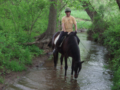 Horse and rider in a stream TTouch Theexcellenthorse.com