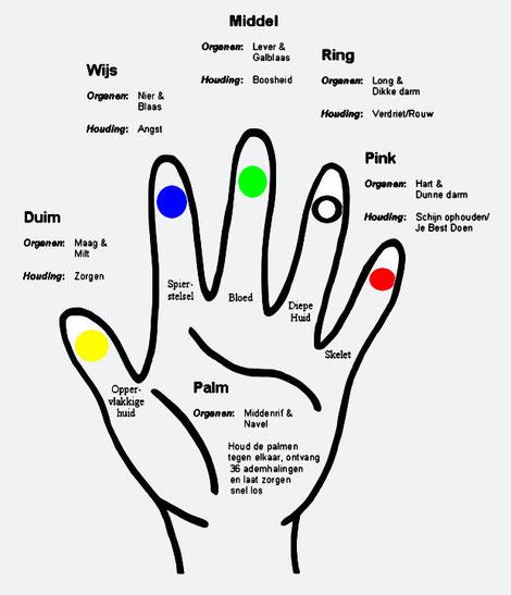 Duim, vingers en handpalm verwijzingen volgens Jin Shin Jyutsu