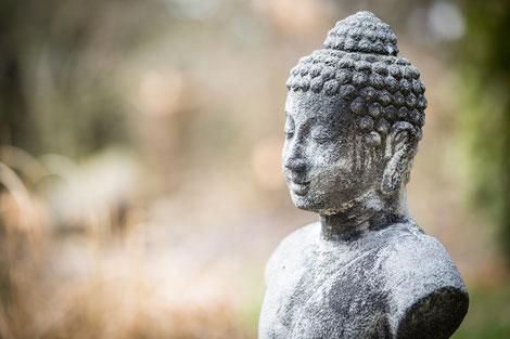 Entspannung durch bewusstes Atmen, Psychosomatik Lunge