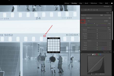 Detail, Adobe Lightroom, Weißabgleich, Dr. Ralph Oehlmann, Oehlmann-Photography