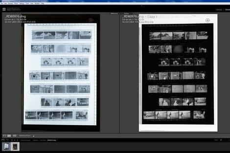 Adobe Lightroom, Gegenüberstellung von Negativ und Positiv, Dr. Ralph Oehlmann, Oehlmann-Photography