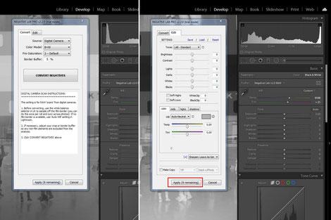 Detail, Adobe Lightroom, Negative Lab Pro Plugin, Dr. Ralph Oehlmann, Oehlmann-Photography