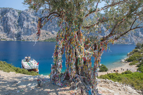 Boat trip with colorful bracelets at a tree and thirsty goats in the background
