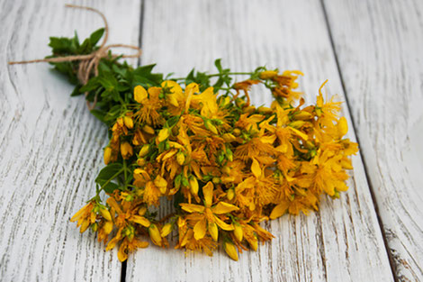 Radiant Reality Nutrition Blog | Anxiety and Depression | St Johns Wort