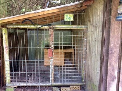 Ferienhaus mit Hundezwinger am Wald