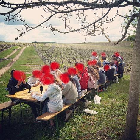 visite-vignoble-cave-decouverte-vigne-vin-degustation-atelier-ludique-Vallee-Loire-Tours-Amboise-Vouvray-Rendez-Vous-dans-les-Vignes