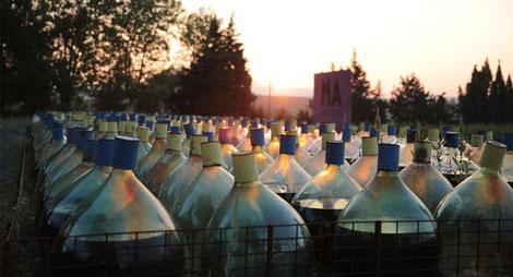 Vin-Doux-Naturel-Maury