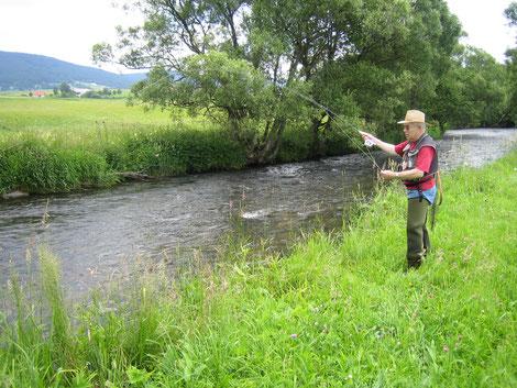 Regenbogenforellen, Aitel und Bachsaiblinge warten auf den Fischer, der sein Handwerk versteht