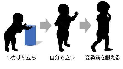 大阪のパーソナルトレーニングジム「エイトループ」今ある筋肉活かす原点は体軸の姿勢筋を鍛え姿勢の保持力や体力、代謝をあげること