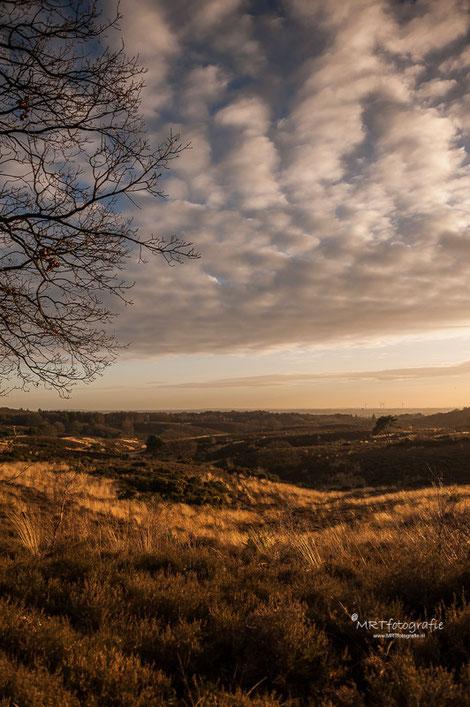 Posbank bij zonsondergang, verticale foto