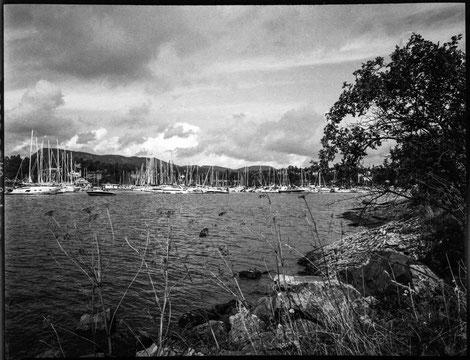 Fjord in Oslo