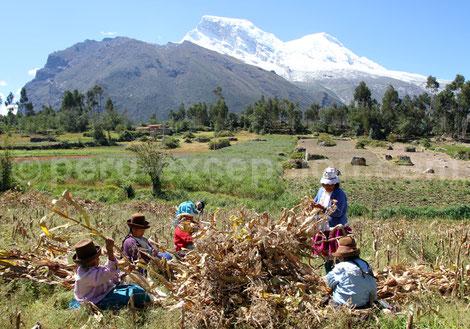 Les Cordillères Blanche et Noire Huaraz Pérou