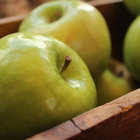 Nur Äpfel essen? Nie wieder Diäten!