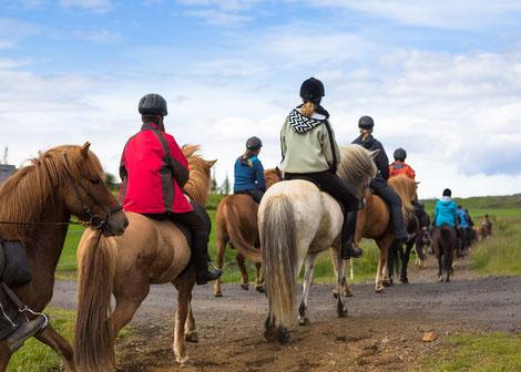 Reitergruppe auf Pferden