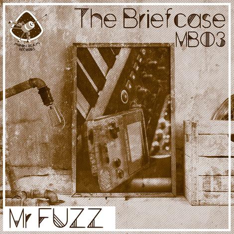 Mr Fuzz