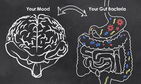 Disturbances in the gut can influence our brain. In fact studies have repeatedly demonstrated that altered brain-gut-microbiota interactions result in things like autism, anxiety, depression and Parkinson's