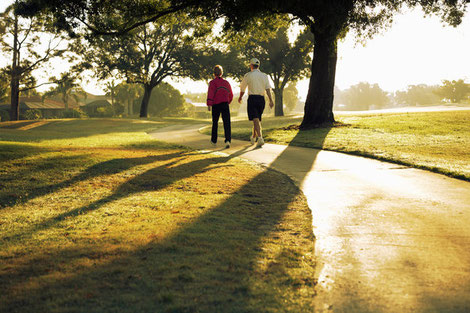 Older couple walking in the park in summer