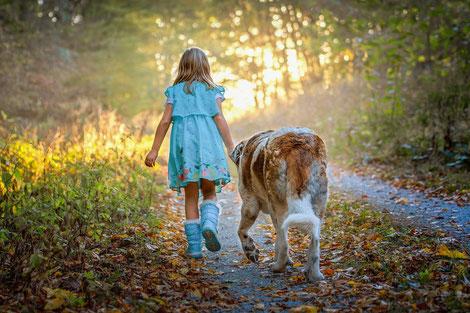 Hund mit Kind, Familienhund, der beste Freund der Kinder, Sportskanone, für die ganze Familie, wampel.net