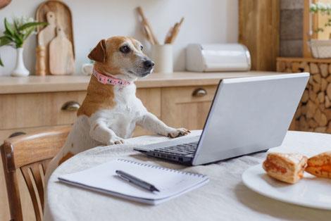 便箋と万年筆。傍らにインクとコーヒー、クッキー。