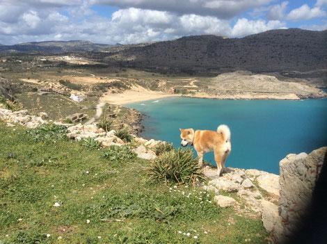 Blick vom Burgberg zum Agathi Strand