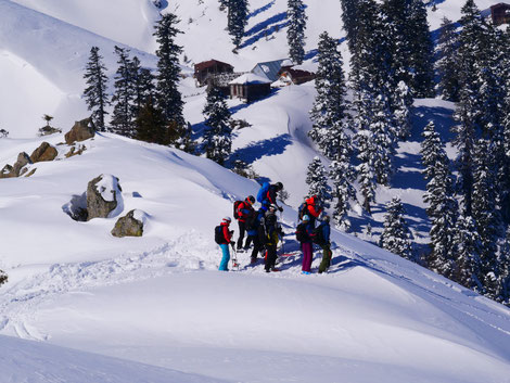 Freeride, Catski, Bakhmaro, Caucasus, Mountain Guide