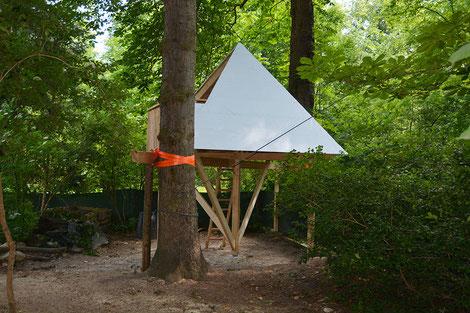 Schüler bauen ein Baumhaus