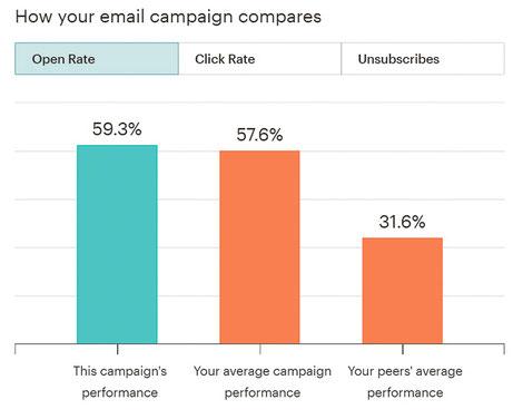 Screenshot Beispiel Statistik-Tool für Open Rate Newsletter