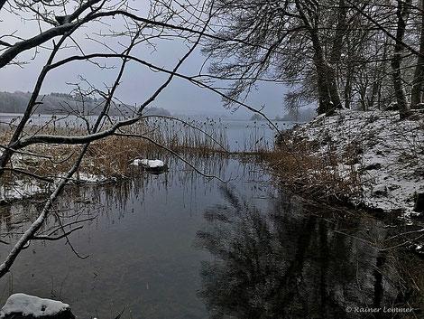 Dreifelder Weiher im Winter