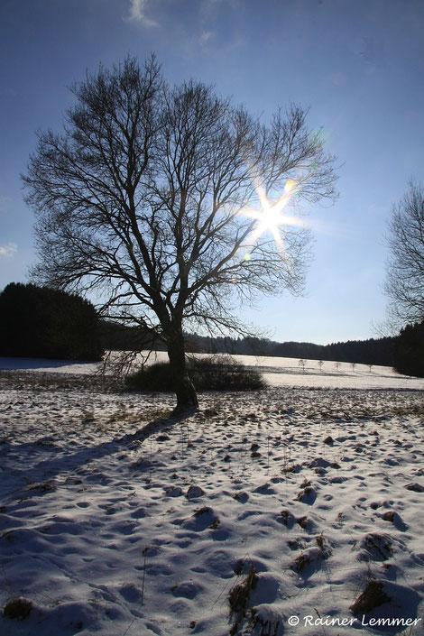 Winterwanderung im Westerwald