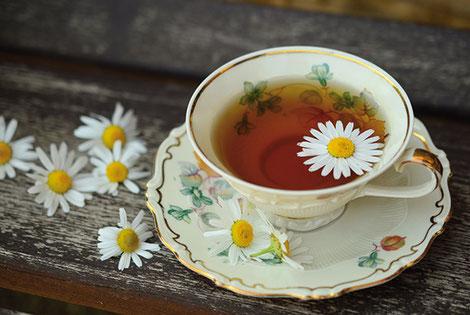 Boisson relaxante par excellence, la tisane de plantes regorge de bienfaits. crédit photo : Pixabay© congerdesign