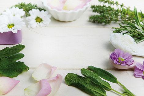 Le thym, la sauge et la menthe sont des plantes aromatiques au nombreux bienfaits sur l'organisme. Outre le parfum qu'elles donnent aux préparations culinaires, elles sont antiseptiques, fébrifuges ou encore apaisantes. crédit photo : Pixabay© silviarita