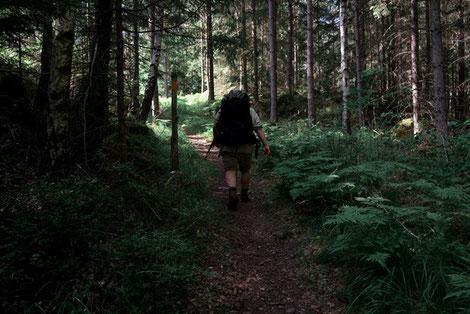 Pfadfinder mit Wanderrucksack auf Wanderweg