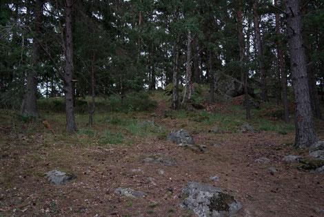 Insel Baven-See Schweden, Wald und Fels, Pfadfinder Sommerfahrt