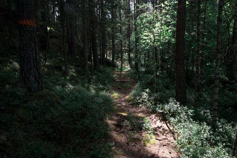 Wanderweg Övre Glottern