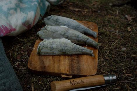 Frischer Fisch, Essen Pfadfinder