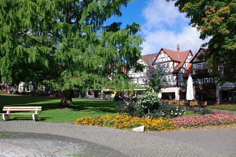 Im Kurpark von Bad-Soden-Allendorf