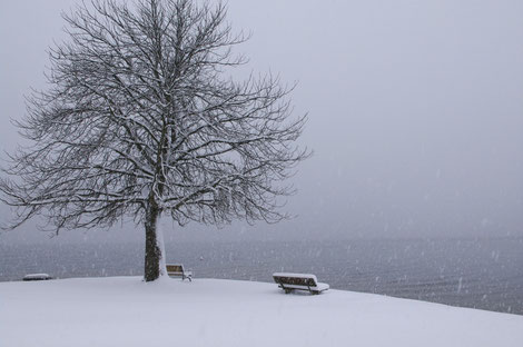 Winterliche Impressionen am Schliersee in Bayern