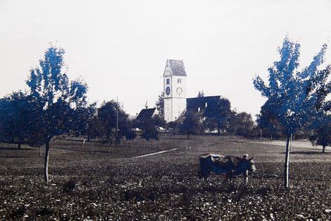 Kirche von Wängi vom Wiesengrund her gesehen