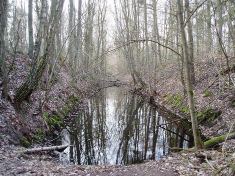 Überreste eines Schießstandes im Wampener Wald