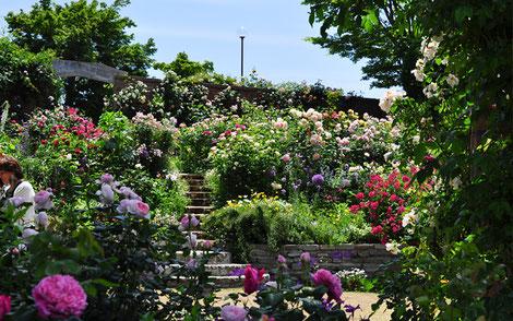 イギリス式庭園