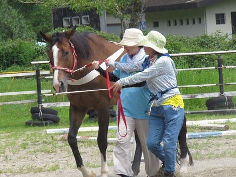 暑い中、馬も人も集中してがんばりました!