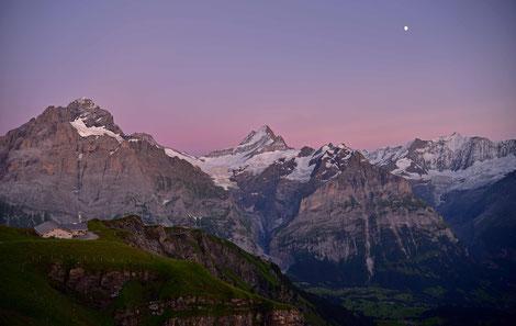 Abendleuchten über den Berner Alpen