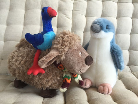 pets Pukeko sheep Little Blue Penguin plush toy Plüschtier
