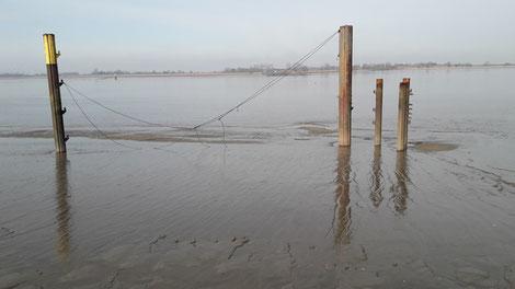Blick vom Stellplatz auf die Weser