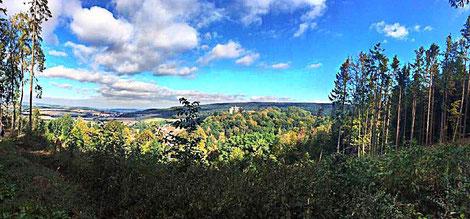 Weite Aussichten und die Stille in der Natur wirkt entschleunigend auf Körper und Geist © Naturpark Teutoburger Wald/Eggegebirge